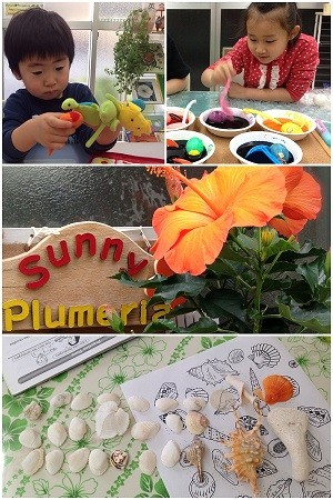 Sunny Plumeria英会話