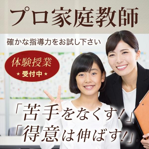 家庭教師ファースト 【新宿区エリア】
