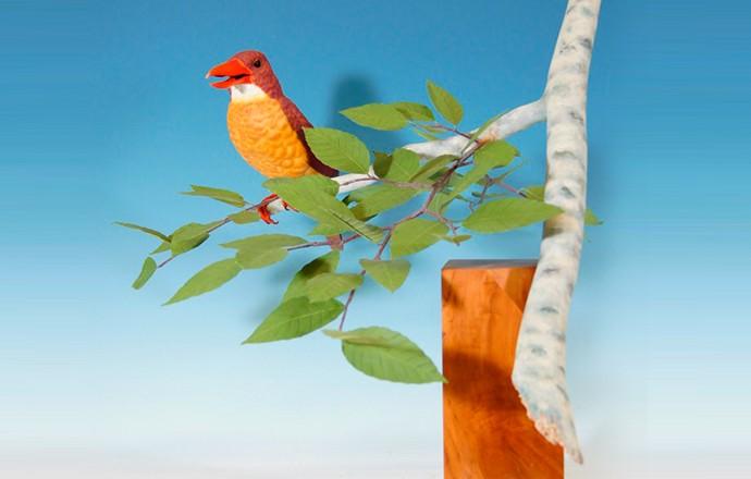 鳥の工房つばさ 世田谷教室