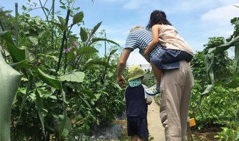 手ぶらで行けるサポート付き貸し農園 シェア畑 二子玉川