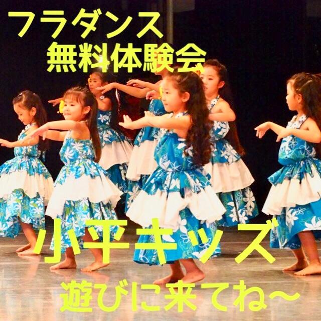 フラダンス教室 Hālau Nā Lei O Ka Lehua(ハーラウ ナー レイ オ カ レフア) 小平教室